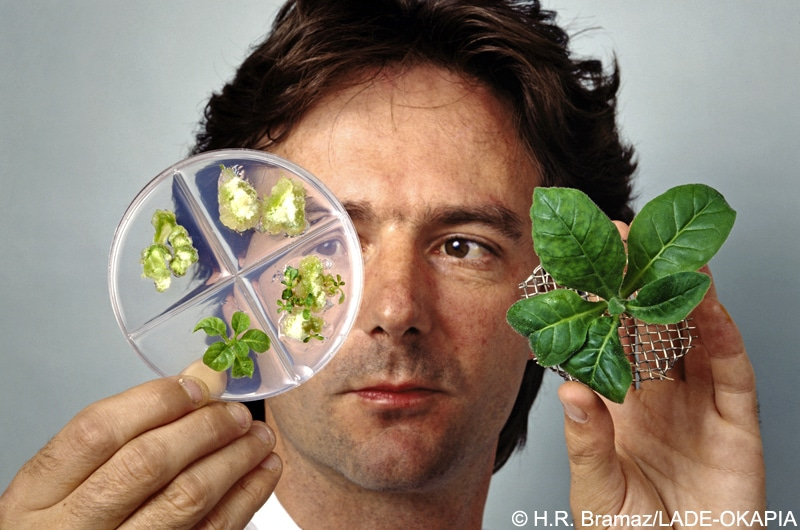 |[de] Menschen Personen Biogenetik Gen - Forschung |[en][AUTOTRANSLATE] Human Persons biogenetics Gen - research |[fr][AUTOTRANSLATE] Humaine biogénétique Personnes Gen - recherche