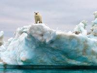 Klimawandel – Bilder und Illustrationen zu den Folgen globaler Erwärmung