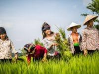 Ausstellung: CARE Klimaheldinnen – Wanderausstellung