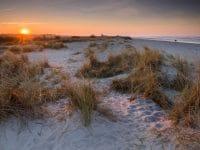 Von der Schönheit und Einzigartigkeit der Natur: Axel Ellerhorst neu bei Lookphotos