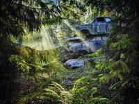 """laif Fotograf Dieter Klein """"Forest Punk"""" in Zingst"""