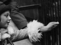 175 Jahre Berliner Zoo: Fotos aus den 1930ern von Friedrich Seidenstücker