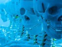 Medizin, Forschung und ullstein bild
