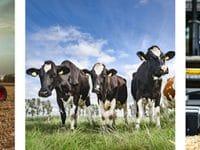 Countrypixel neu bei imago images: Authentische Fotografien als Spiegel der heimischen Landwirtschaft