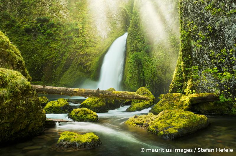 USA, Amerika, Columbia River Gorge, Wasserfall, Wahclella, Fall, Licht, Strahlen, Lichtstahlen, Strahlen, Moos, Wasser, Farben, Landschaft,