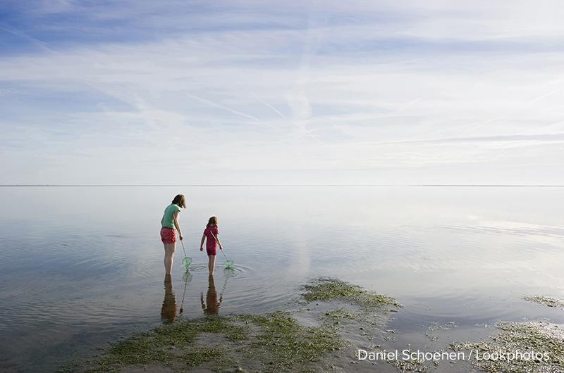Menschen laufen durchs Watt, Nationalpark Wattenmeer, bei Wyk, Föhr, Nordfriesland, Schleswig-Holstein, Deutschland, Europa