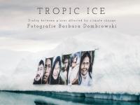 Tropic Ice by Barbara Dombrowski